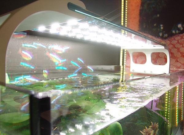 Illuminazione nell acquario l illuminazione in acquario di francesco