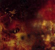 alghe infestanti nell'acquario di barriera cianobatteri