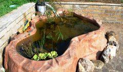 realizzazione laghetto giardino