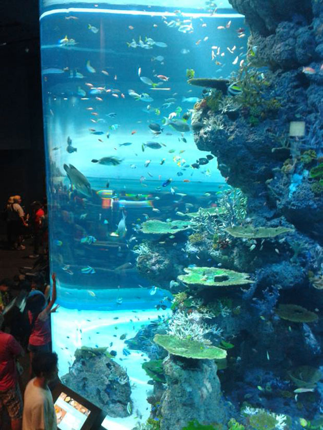 Sea Aquarium