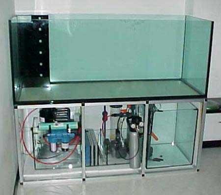 Consigli su come realizzare un 39 acquario di barriera for Filtro vasca pesci