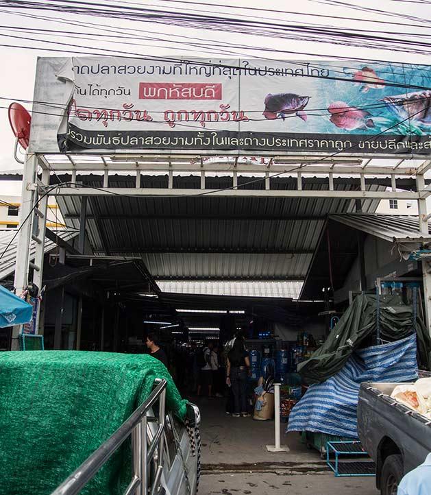 Mercato di Chatuchak Ingresso