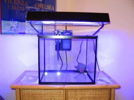 L'acquario di Luiks