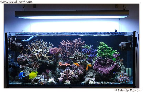 prova-reattore-korallin