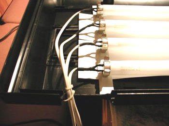 Modificare l'illuminazione dell'Askoll Ambiente