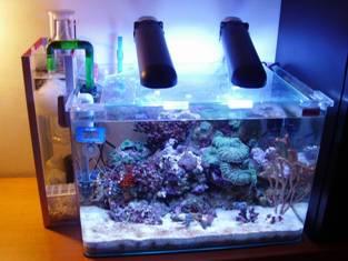 Sump a zainetto per nano reef