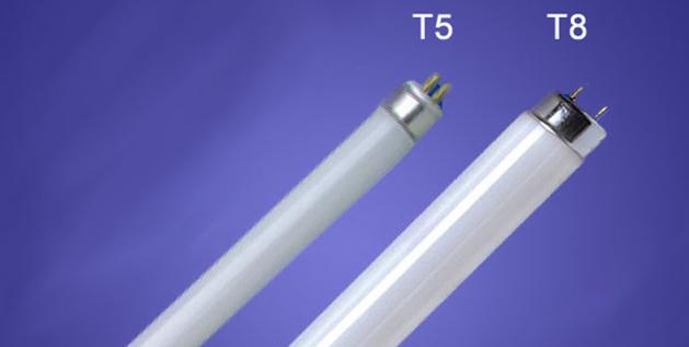Neon T5 e T8 a confronto
