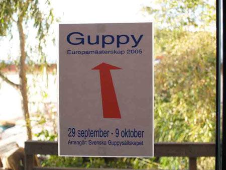 Concorso Europeo del Guppy