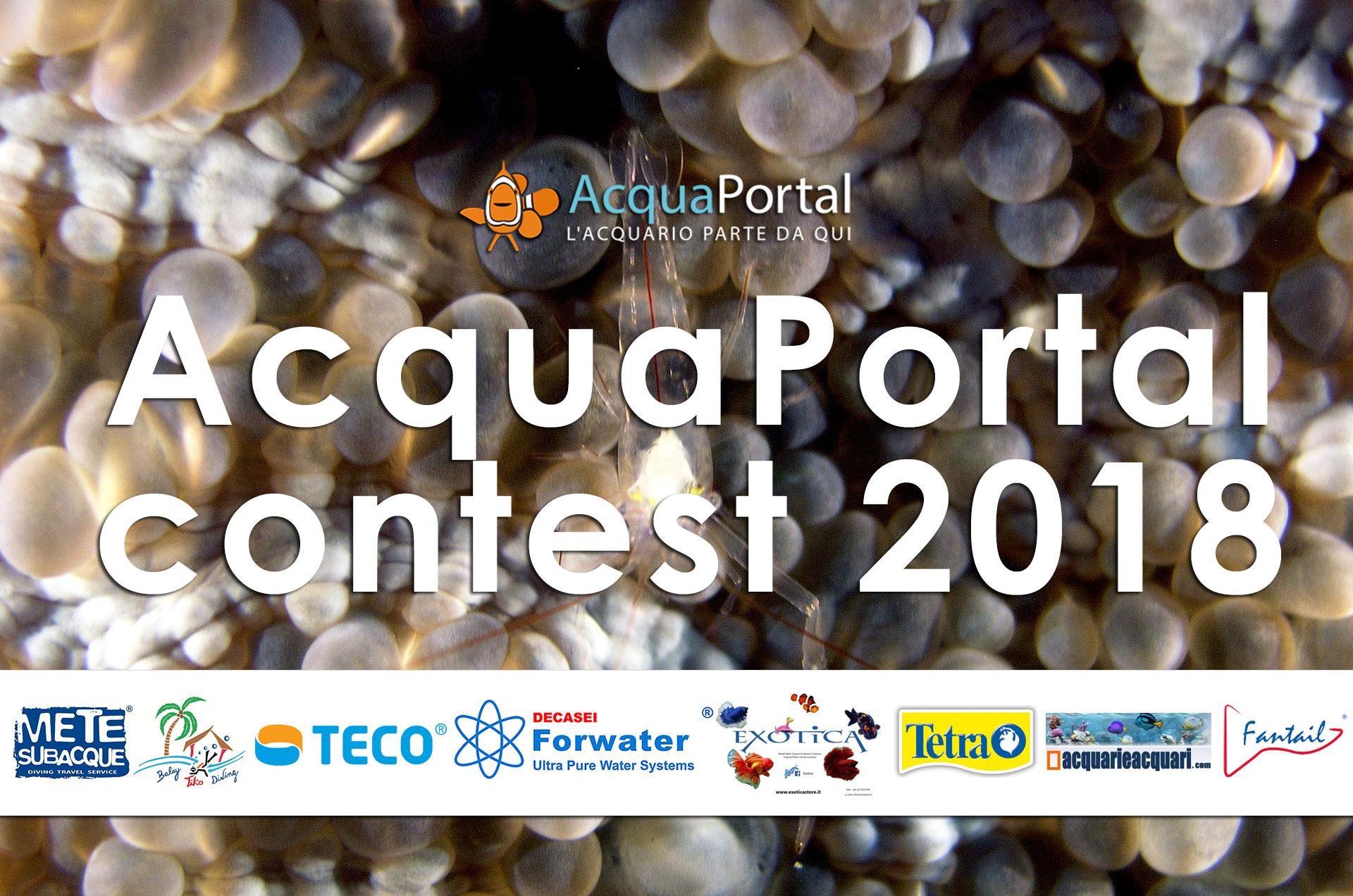 acquaportal contest