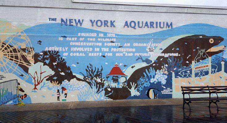 new-york-aquarium-1