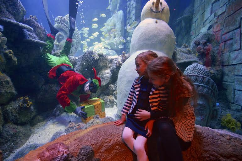 Natale Lido di Jesolo Sea Life Aquarium 2