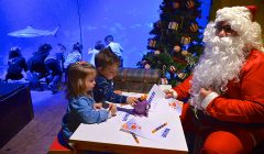 Natale Sea Life Aquarium Jesolo