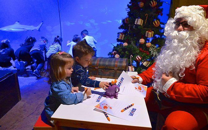 Natale Sea Life Aquarium Jesolo