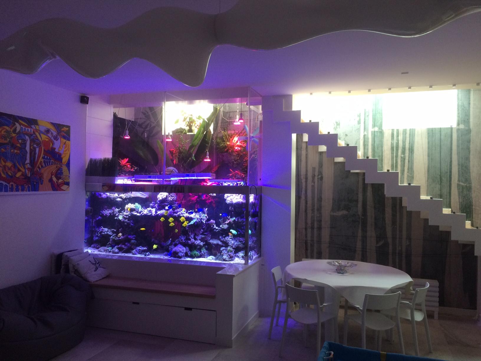 Realizzazione di un acquario da litri acquaportal
