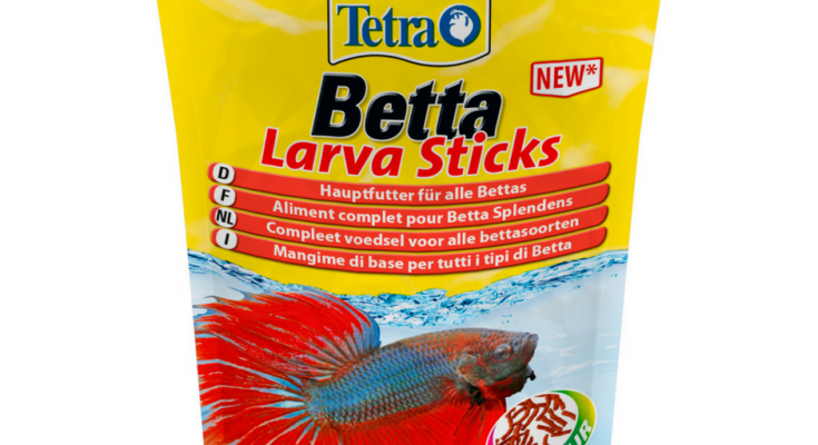 betta larva sticks