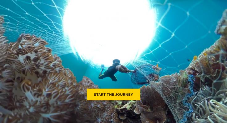 Reef to Aquarium