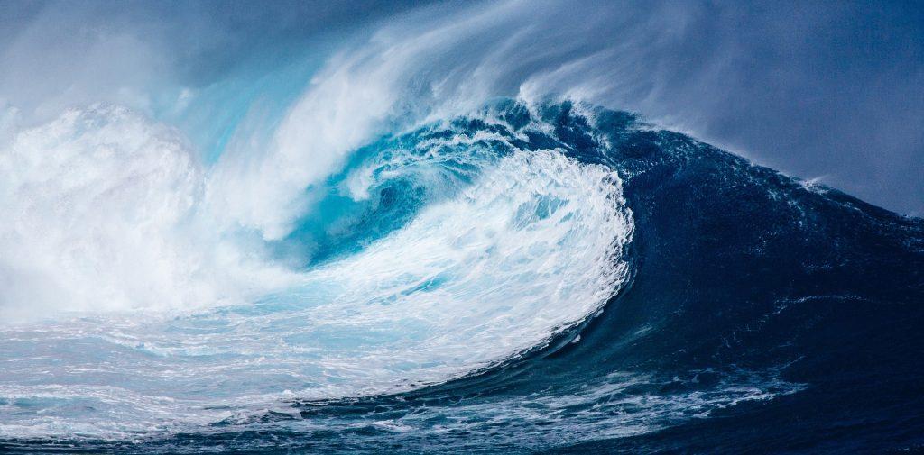 Giornata Mondiale degli Oceani 1