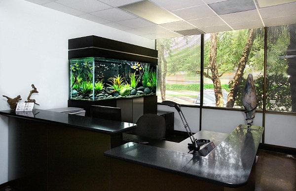 acquario in ufficio