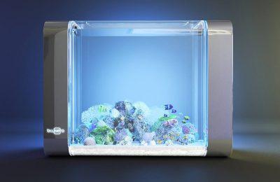 acquario smart bluenero