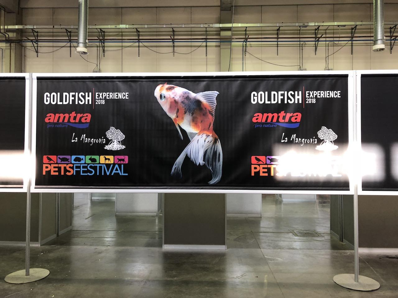 PetsFestival 2018 Goldfish Experience