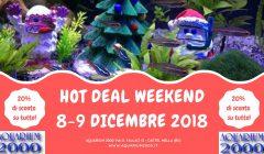 Hot-deal-weekend