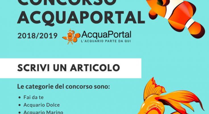 partecipare al concorso di acquaportal