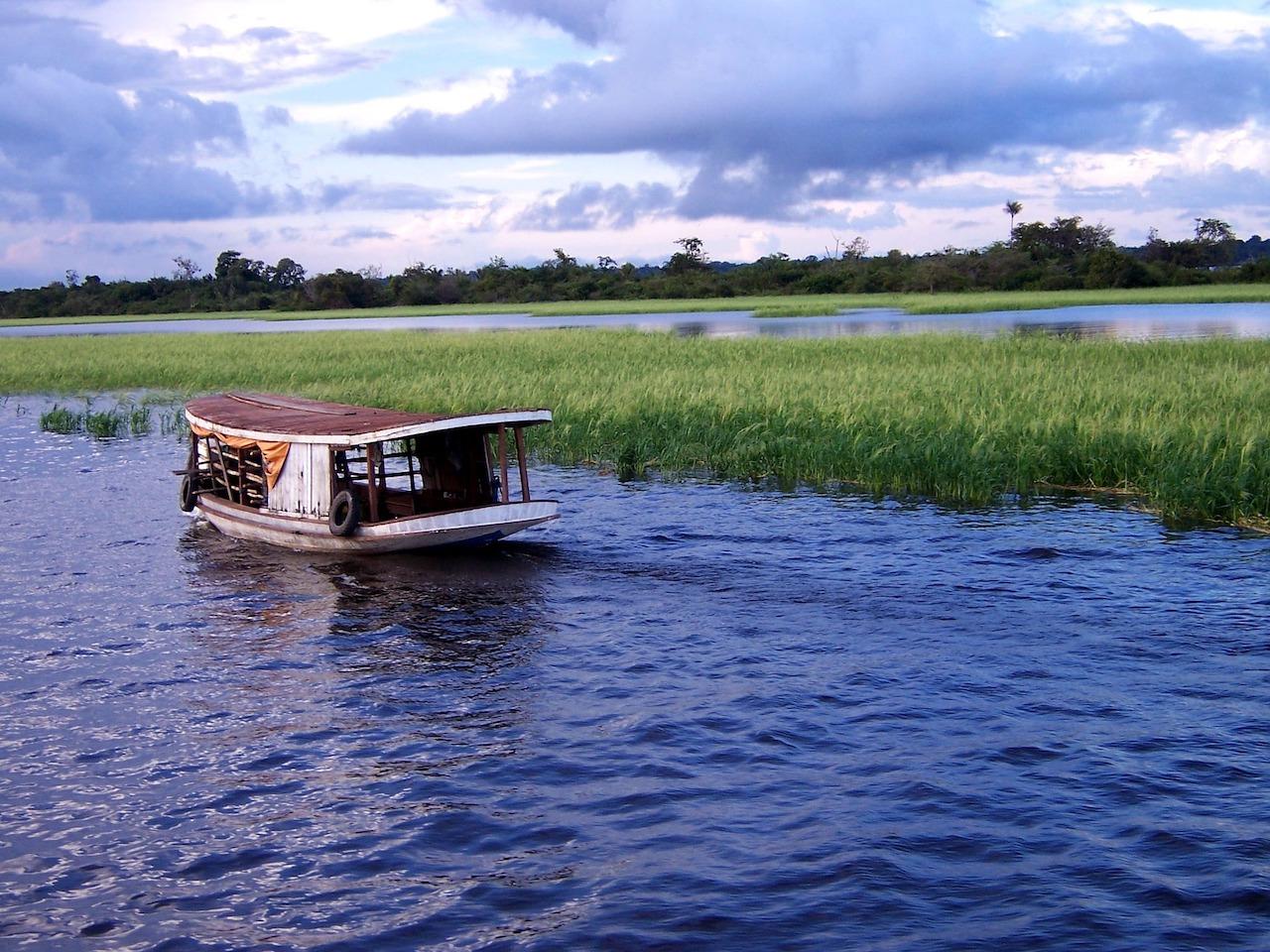 rio delle amazzoni inquinato