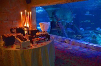 gardaland sea life aquarium san valentino